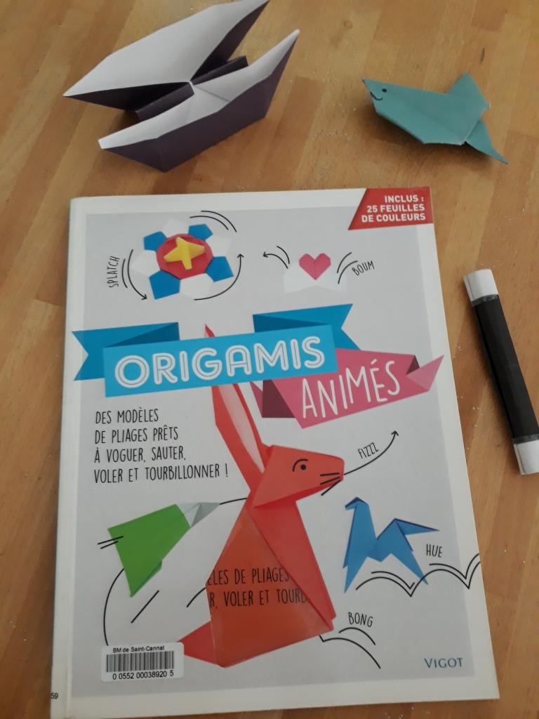 Un Livre Pour Apprendre A Faire Des Origamis Cece From Aix