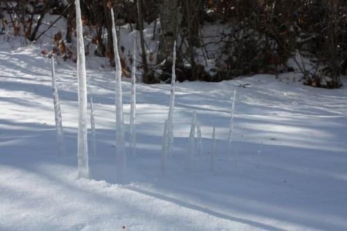 land art,livre,hiver,neige