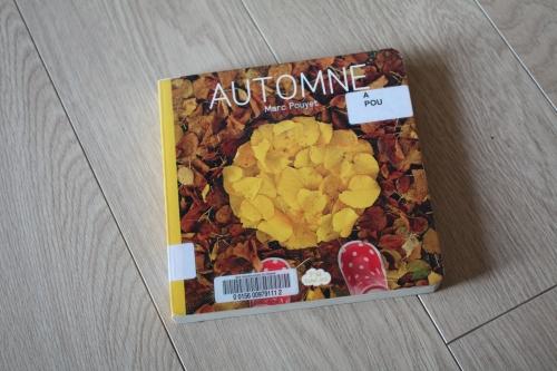 p'tit land art,livre,automne