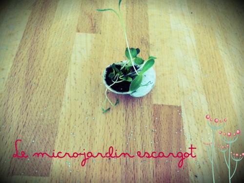 jardinage,activité enfant,escargot