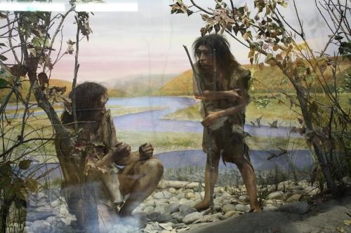 préhistoire,musée,quinson,village