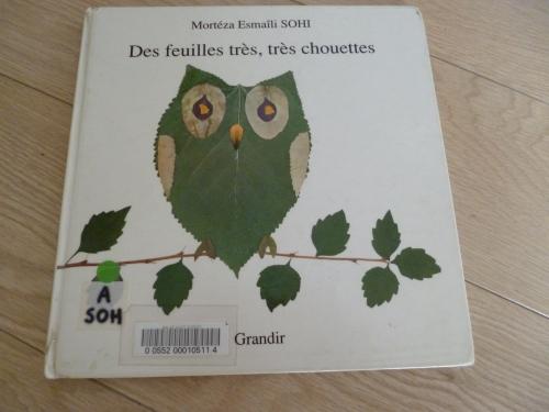 livre,feuille,activité,enfant,animaux,chouette