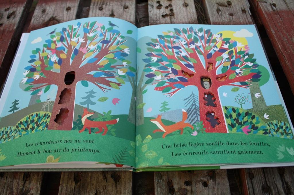 Au creux de mon arbre (3).JPG