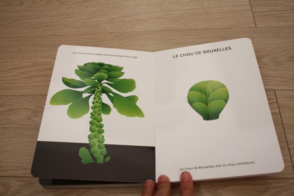 Légumes de saison (3).JPG