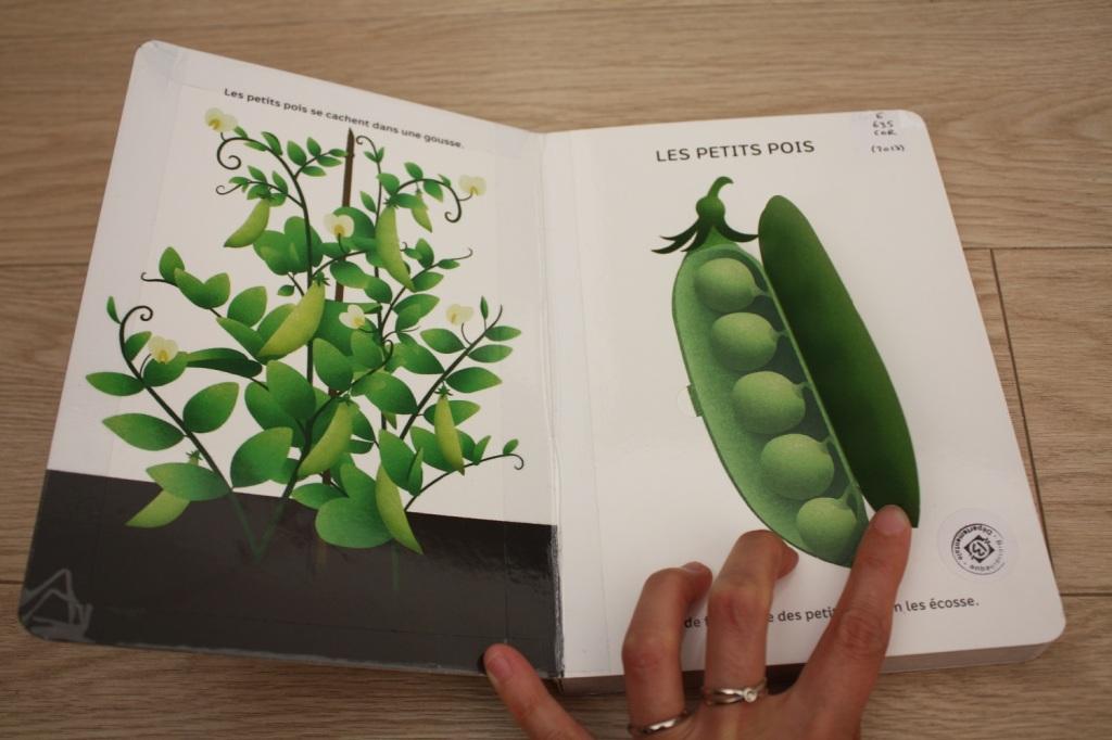 légumes,livre