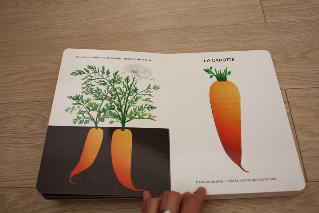 Légumes de saison (5).JPG