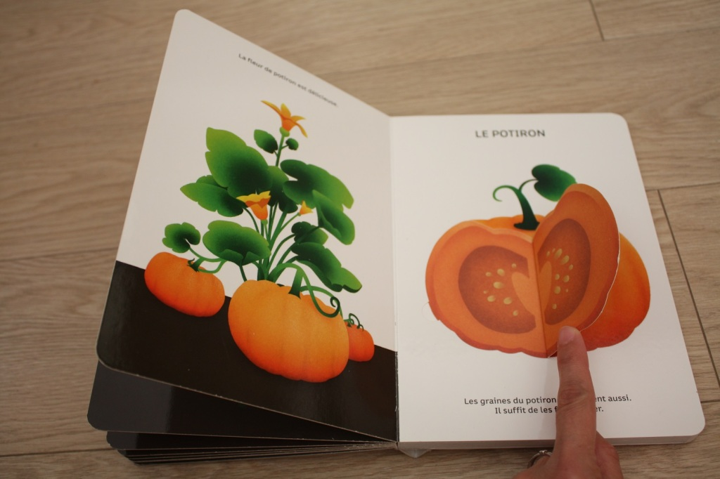 Légumes de saison (1).JPG