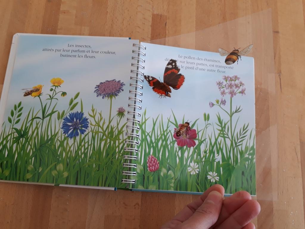 Mes premières découvertes Gallimard la fleur (14).jpg