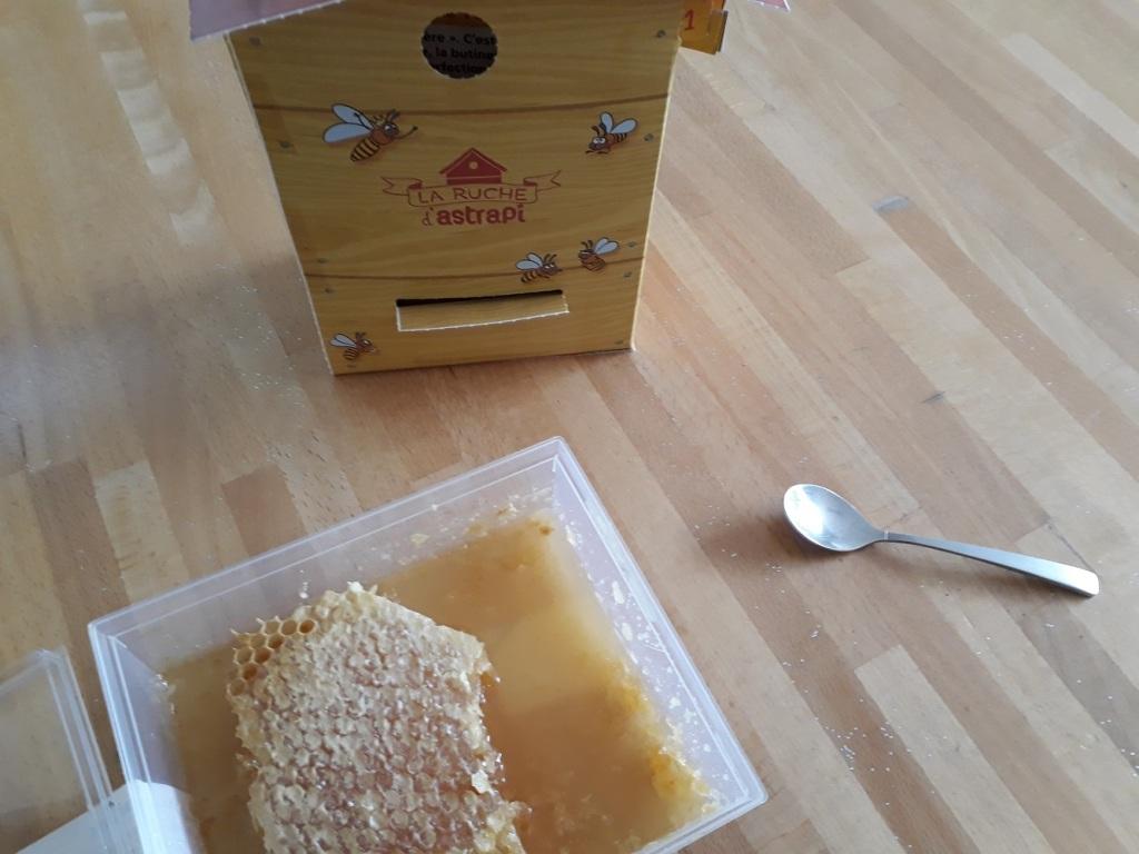 miel,abeille,ruche,astrapi