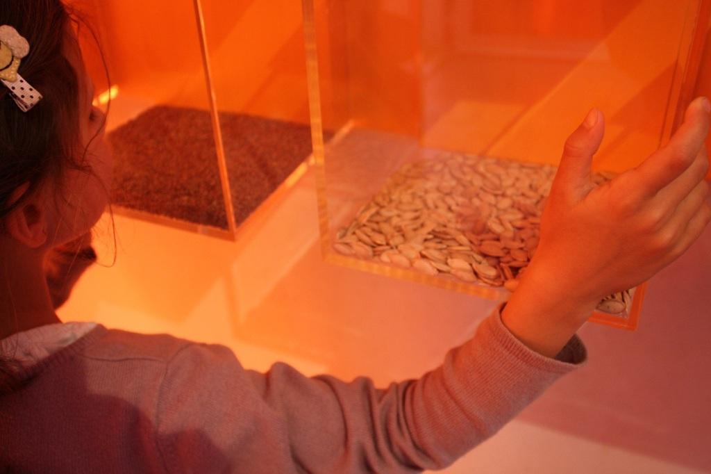 musée epicurium,avignon