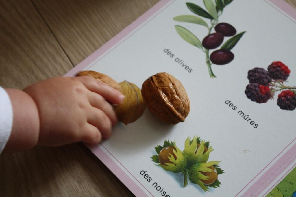Panier découverte bébé fruits (1).JPG
