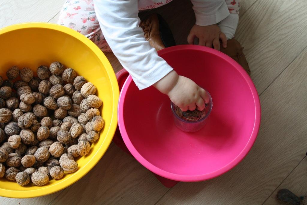 transvasement,montessori,noix,activité,motricité fine